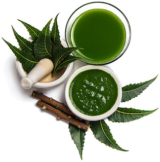 /web-assets/images/ingredients/neem.jpg